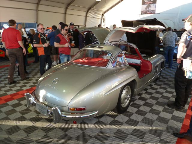 beautiful rear end of the Gullwing